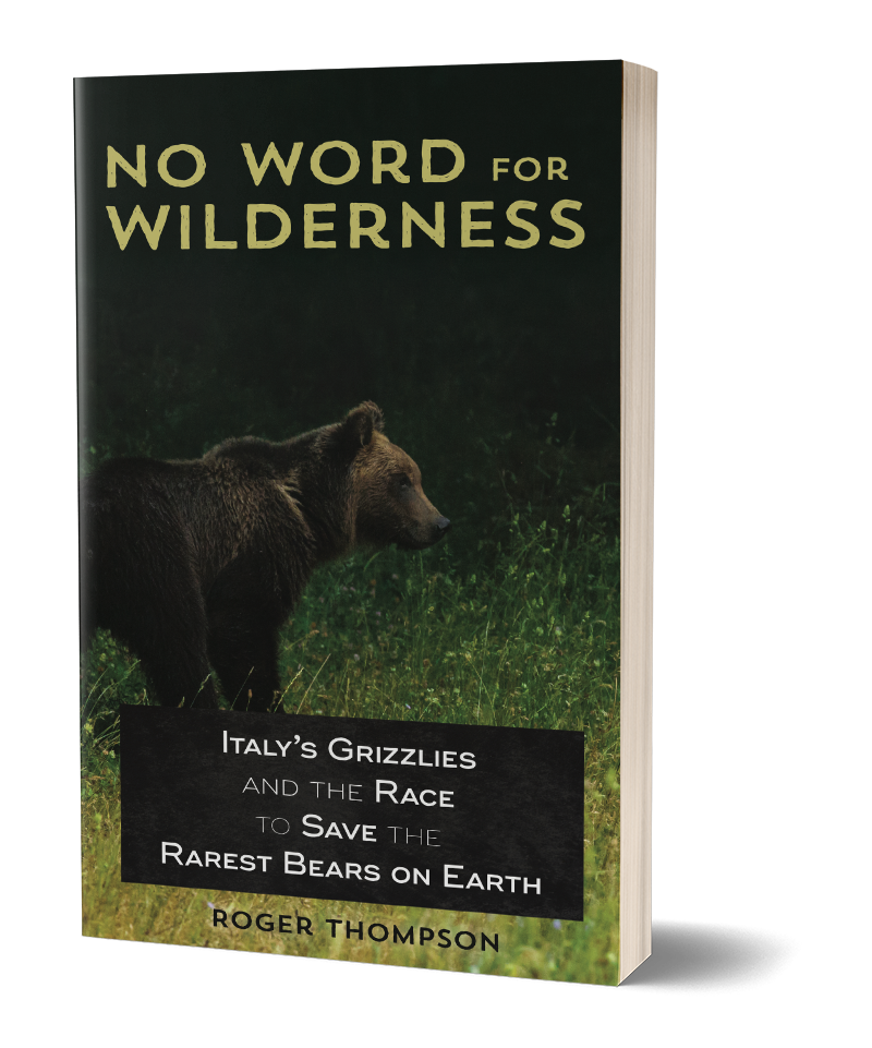 Cover of No Word for Wilderness: Italy's Grizzlies and the Race to Save the Rarest Bears on Earth